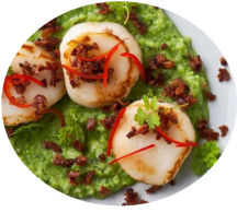 Scallops on a bed of pureed peas with lardons of bacon.